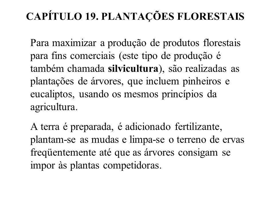 19.2 Comparação do rendimento de uma plantação florestal e um bosque maduro não administrado proteção dos cursos de água, habitats para a vida silvestre, proporcionam áreas de recreação, limpeza do ar, manutenção de reservas genéticas para a sucessão e usos futuros.