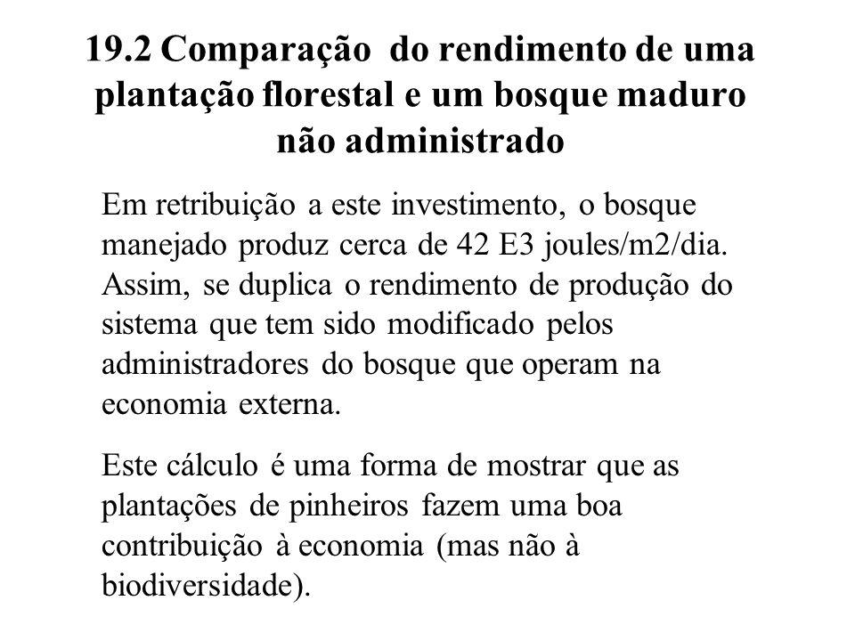 19.2 Comparação do rendimento de uma plantação florestal e um bosque maduro não administrado Em retribuição a este investimento, o bosque manejado pro