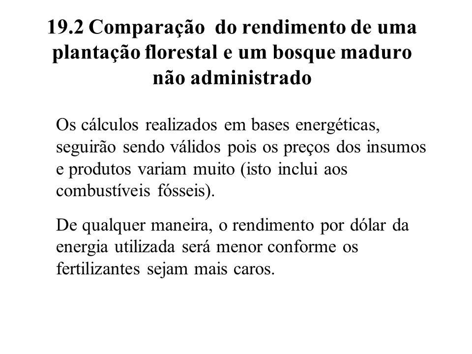 19.2 Comparação do rendimento de uma plantação florestal e um bosque maduro não administrado Os cálculos realizados em bases energéticas, seguirão sen