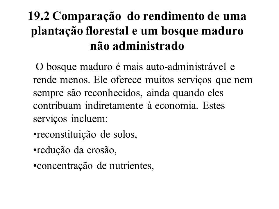 19.2 Comparação do rendimento de uma plantação florestal e um bosque maduro não administrado O bosque maduro é mais auto-administrável e rende menos.