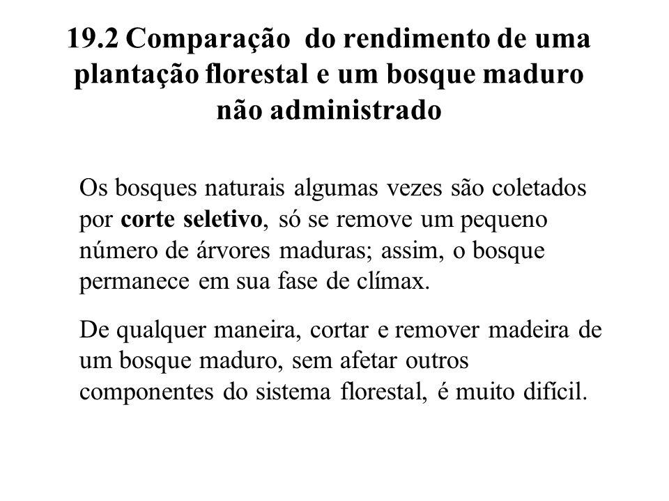 19.2 Comparação do rendimento de uma plantação florestal e um bosque maduro não administrado Os bosques naturais algumas vezes são coletados por corte
