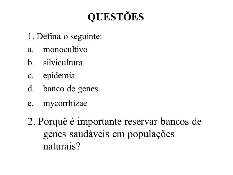 QUESTÕES 1. Defina o seguinte: a.monocultivo b.silvicultura c.epidemia d.banco de genes e.mycorrhizae 2. Porquê é importante reservar bancos de genes