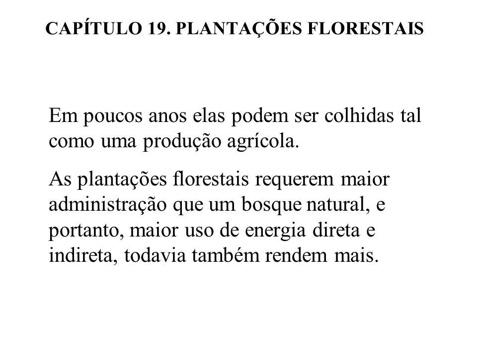 CAPÍTULO 19. PLANTAÇÕES FLORESTAIS Em poucos anos elas podem ser colhidas tal como uma produção agrícola. As plantações florestais requerem maior admi