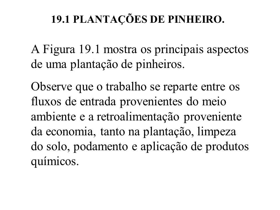 19.1 PLANTAÇÕES DE PINHEIRO. A Figura 19.1 mostra os principais aspectos de uma plantação de pinheiros. Observe que o trabalho se reparte entre os flu