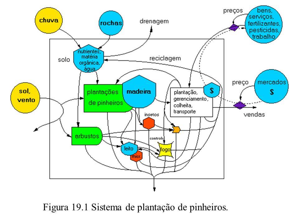 QUESTÕES 4.Usando os dados da Figura 19.2, compare a plantação de pinheiros com o bosque natural: produção bruta, produção líquida, investimentos da economia e produção para o mercado.