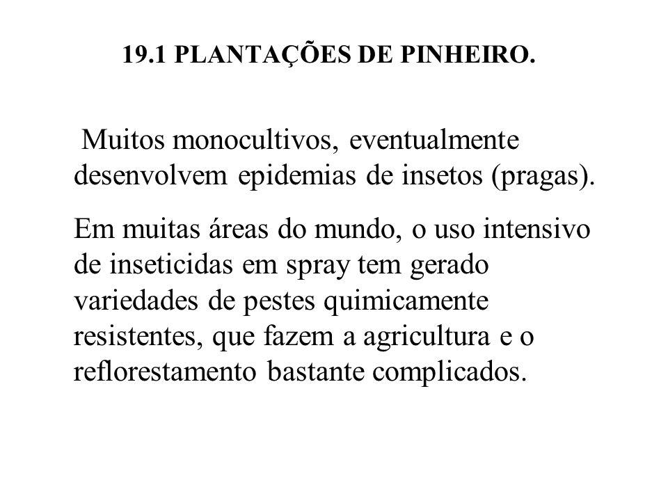 19.1 PLANTAÇÕES DE PINHEIRO. Muitos monocultivos, eventualmente desenvolvem epidemias de insetos (pragas). Em muitas áreas do mundo, o uso intensivo d