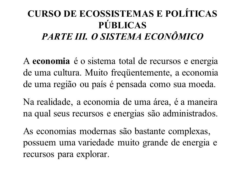 CURSO DE ECOSSISTEMAS E POLÍTICAS PÚBLICAS PARTE III. O SISTEMA ECONÔMICO A economia é o sistema total de recursos e energia de uma cultura. Muito fre