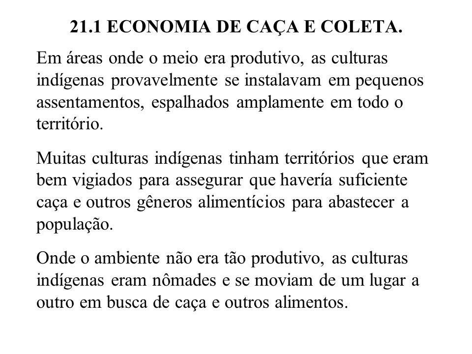 21.1 ECONOMIA DE CAÇA E COLETA. Em áreas onde o meio era produtivo, as culturas indígenas provavelmente se instalavam em pequenos assentamentos, espal