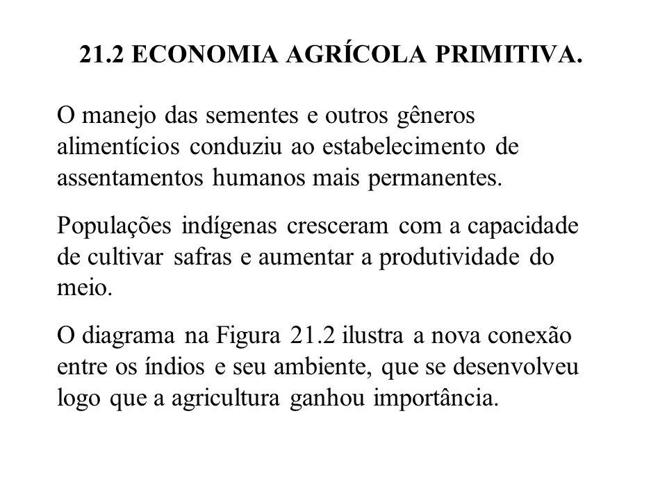 21.2 ECONOMIA AGRÍCOLA PRIMITIVA. O manejo das sementes e outros gêneros alimentícios conduziu ao estabelecimento de assentamentos humanos mais perman