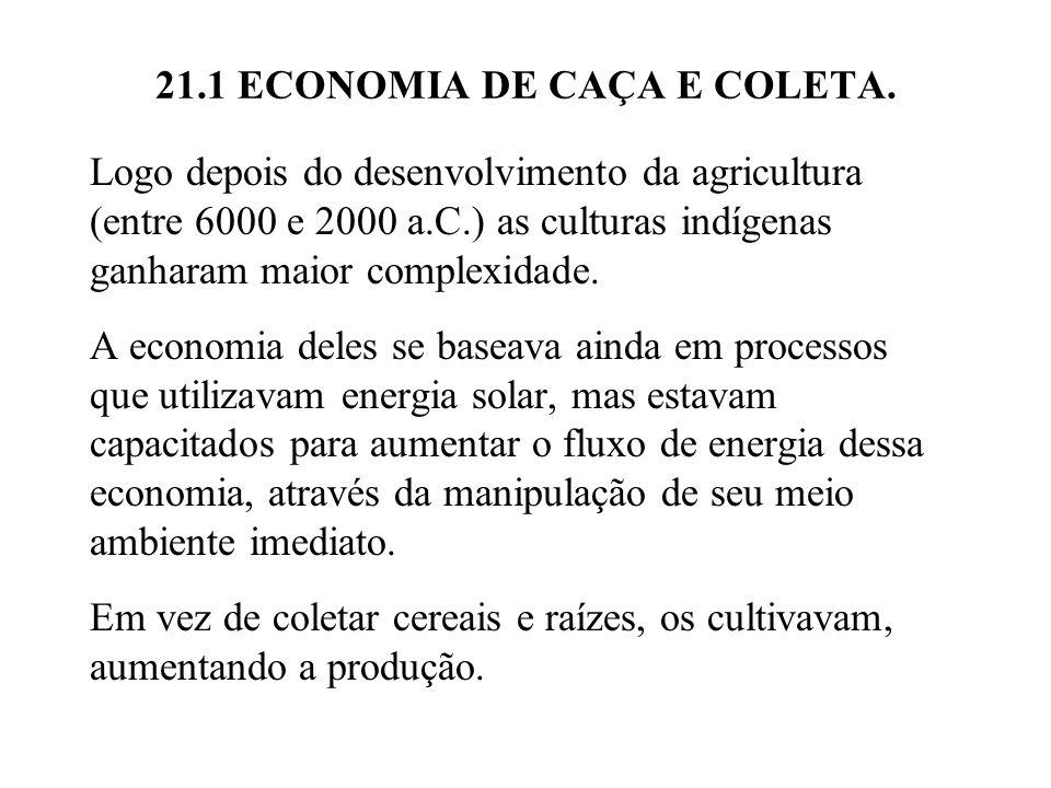 21.1 ECONOMIA DE CAÇA E COLETA. Logo depois do desenvolvimento da agricultura (entre 6000 e 2000 a.C.) as culturas indígenas ganharam maior complexida
