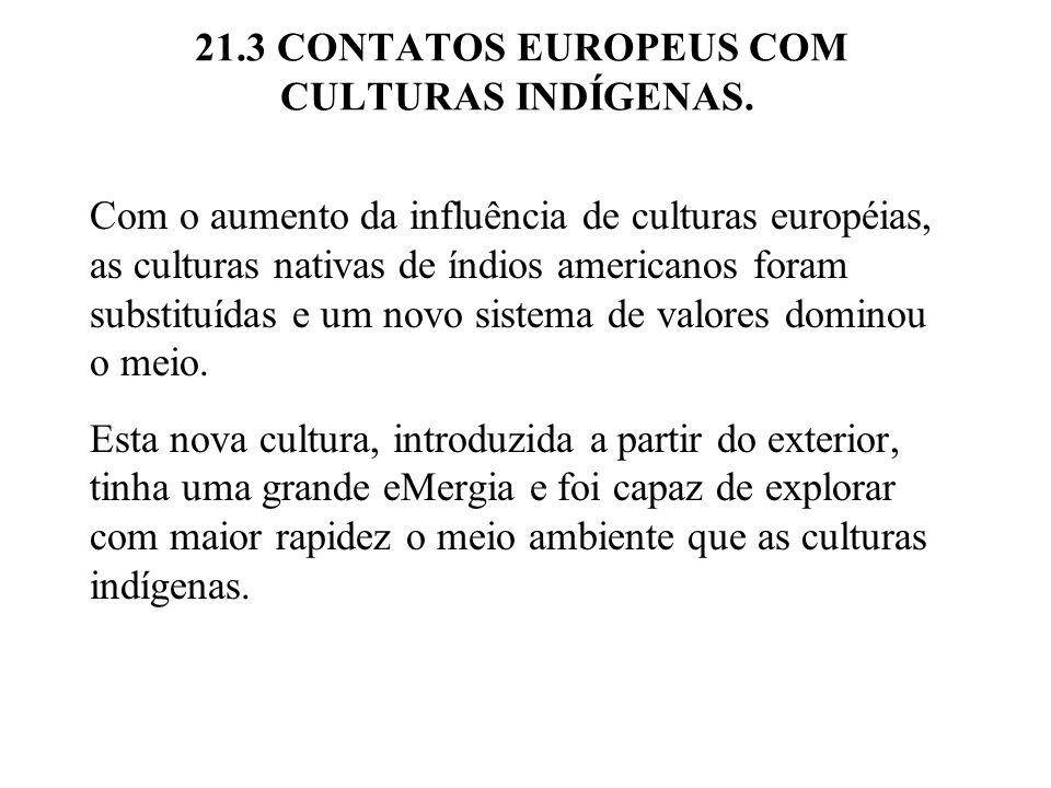 21.3 CONTATOS EUROPEUS COM CULTURAS INDÍGENAS. Com o aumento da influência de culturas européias, as culturas nativas de índios americanos foram subst