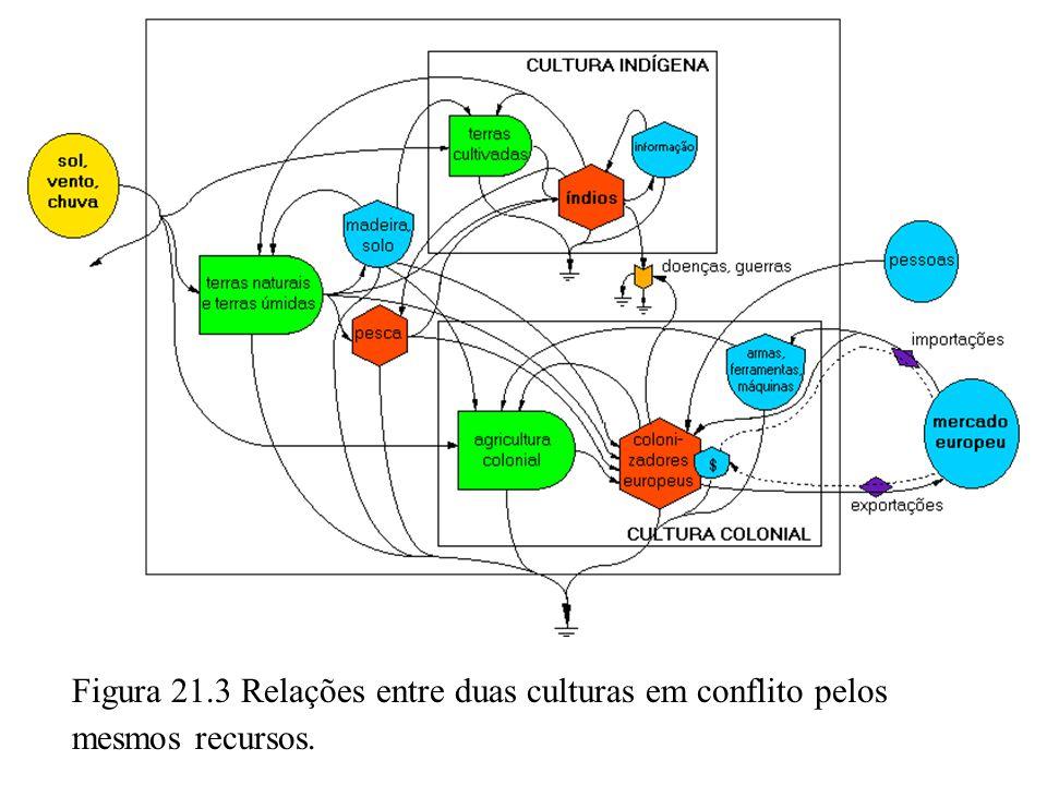 Figura 21.3 Relações entre duas culturas em conflito pelos mesmos recursos.