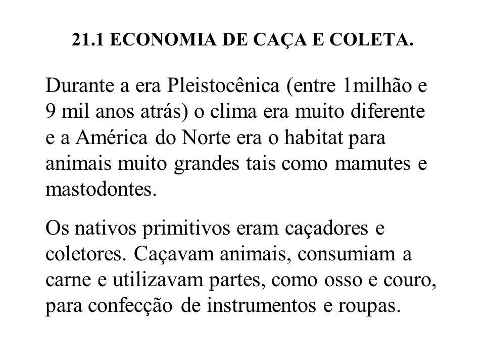 21.1 ECONOMIA DE CAÇA E COLETA. Durante a era Pleistocênica (entre 1milhão e 9 mil anos atrás) o clima era muito diferente e a América do Norte era o