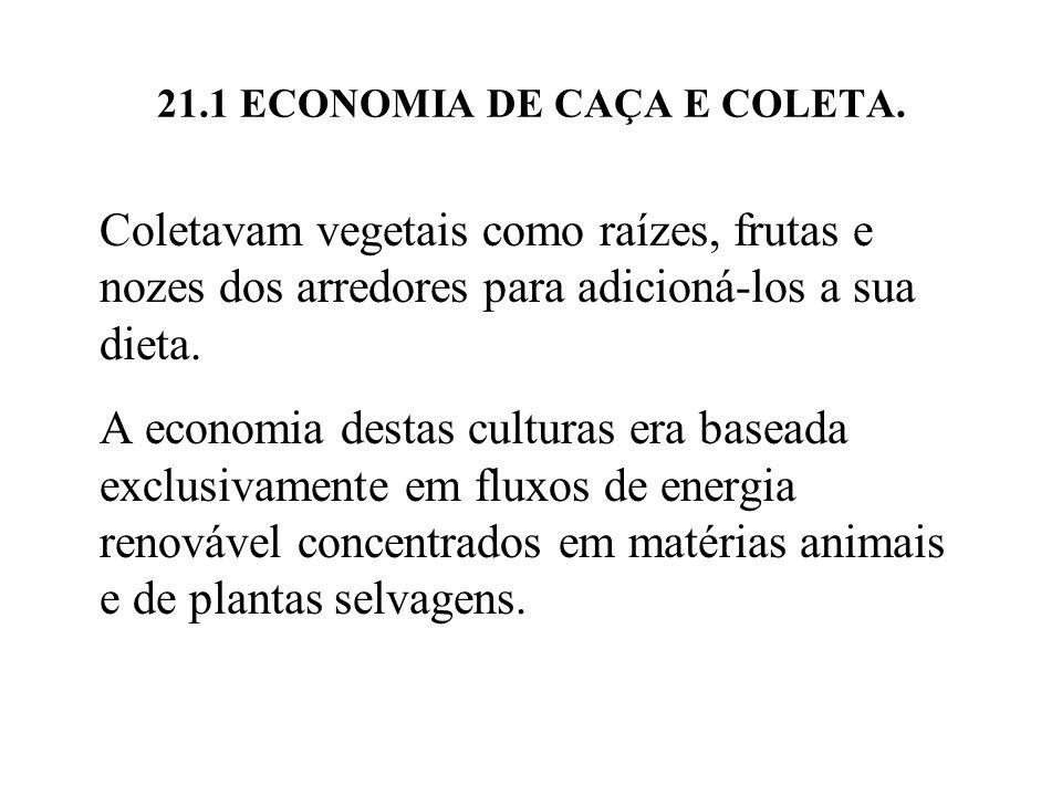 21.1 ECONOMIA DE CAÇA E COLETA. Coletavam vegetais como raízes, frutas e nozes dos arredores para adicioná-los a sua dieta. A economia destas culturas