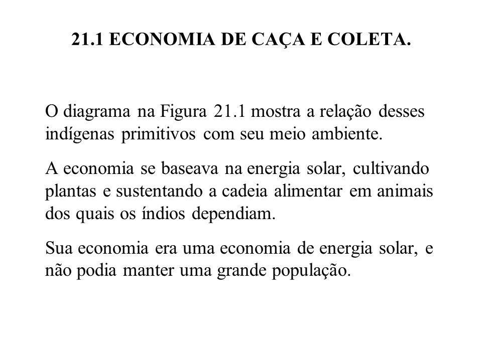 21.1 ECONOMIA DE CAÇA E COLETA. O diagrama na Figura 21.1 mostra a relação desses indígenas primitivos com seu meio ambiente. A economia se baseava na