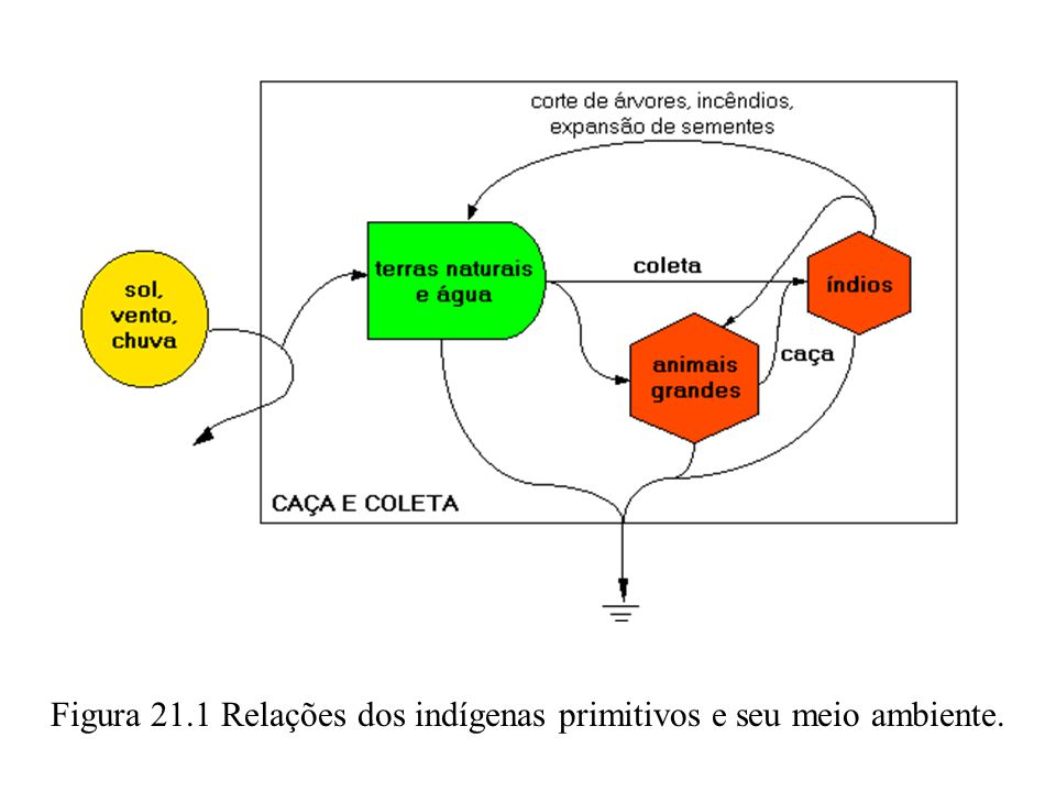 Figura 21.1 Relações dos indígenas primitivos e seu meio ambiente.
