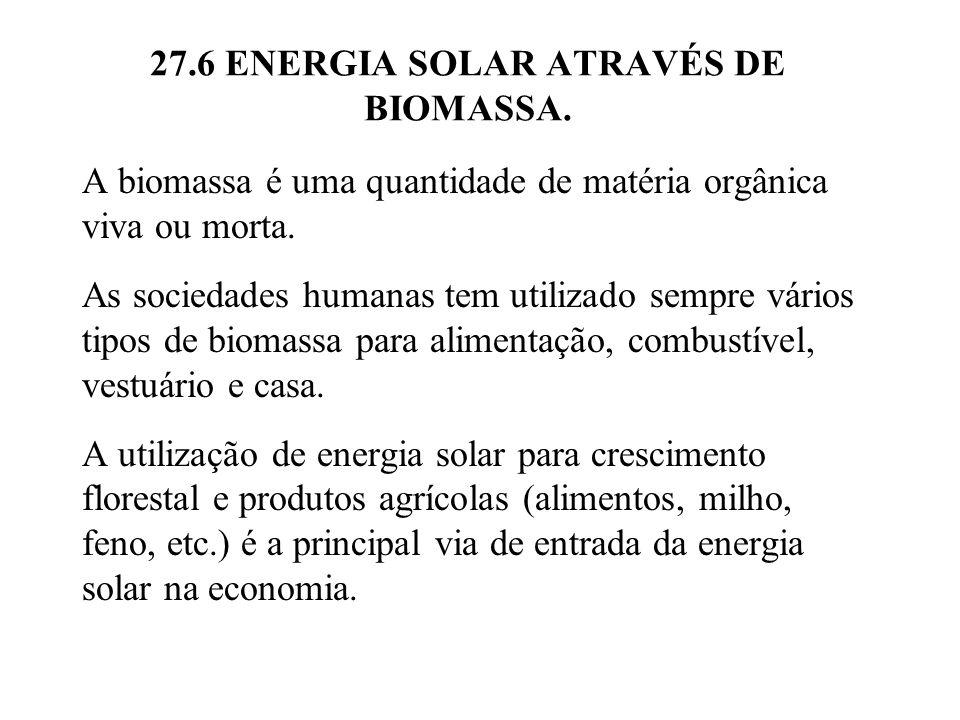 27.6 ENERGIA SOLAR ATRAVÉS DE BIOMASSA.