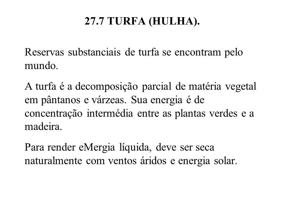 27.7 TURFA (HULHA).Reservas substanciais de turfa se encontram pelo mundo.