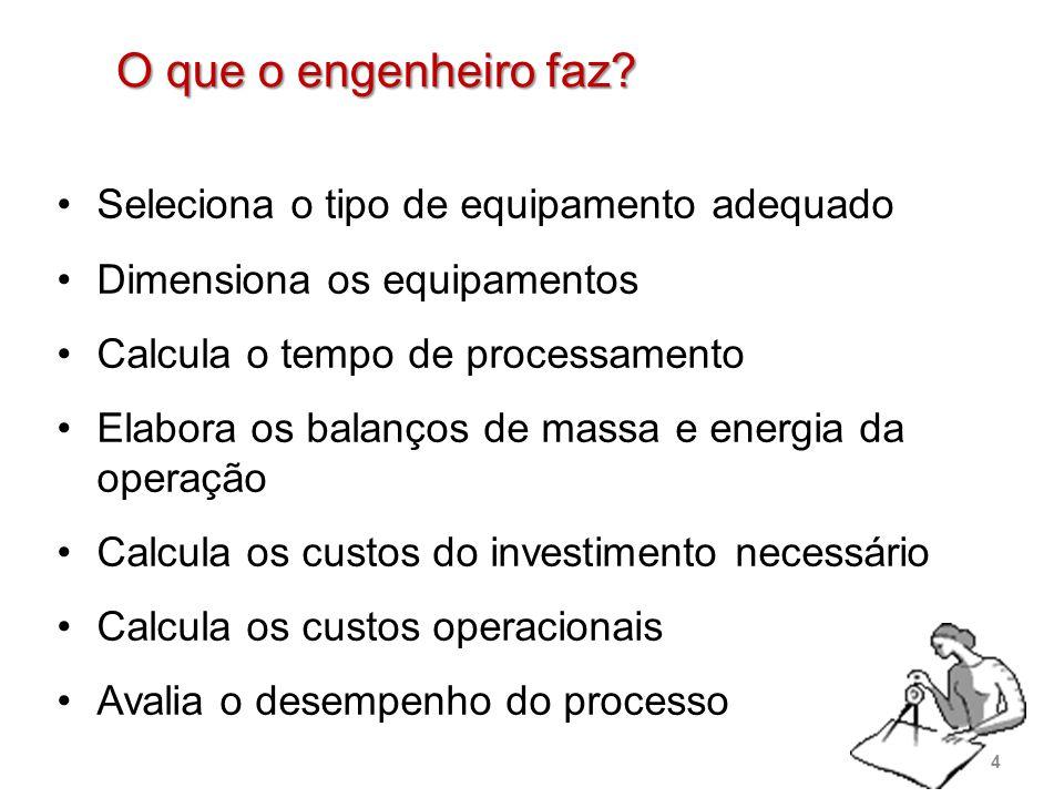 O que o engenheiro faz? Seleciona o tipo de equipamento adequado Dimensiona os equipamentos Calcula o tempo de processamento Elabora os balanços de ma