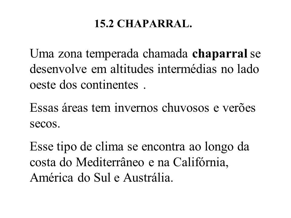 15.2 CHAPARRAL. Uma zona temperada chamada chaparral se desenvolve em altitudes intermédias no lado oeste dos continentes. Essas áreas tem invernos ch