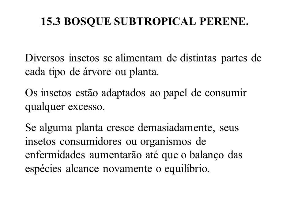 15.3 BOSQUE SUBTROPICAL PERENE. Diversos insetos se alimentam de distintas partes de cada tipo de árvore ou planta. Os insetos estão adaptados ao pape