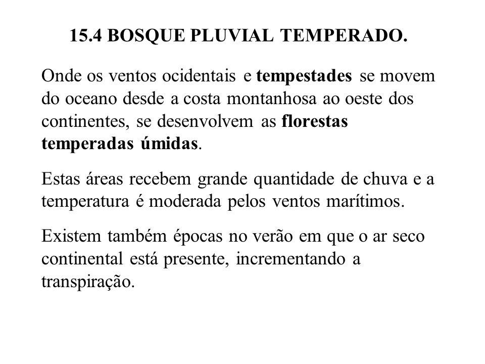 15.4 BOSQUE PLUVIAL TEMPERADO. Onde os ventos ocidentais e tempestades se movem do oceano desde a costa montanhosa ao oeste dos continentes, se desenv