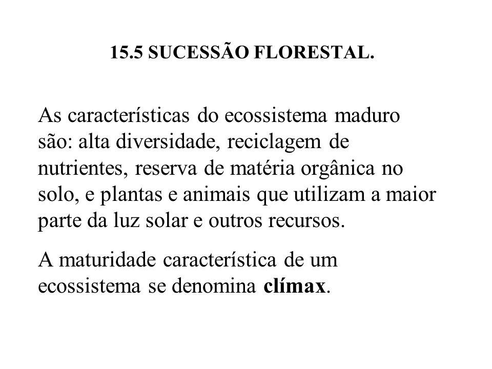 15.5 SUCESSÃO FLORESTAL. As características do ecossistema maduro são: alta diversidade, reciclagem de nutrientes, reserva de matéria orgânica no solo