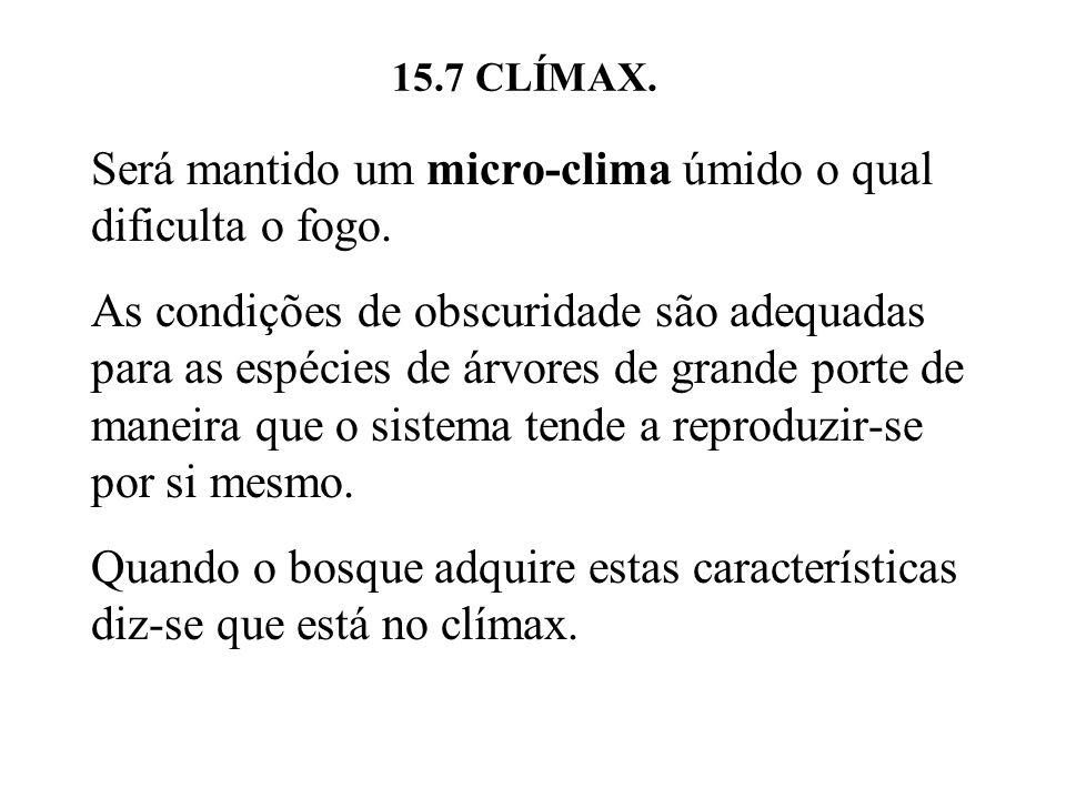 15.7 CLÍMAX. Será mantido um micro-clima úmido o qual dificulta o fogo. As condições de obscuridade são adequadas para as espécies de árvores de grand