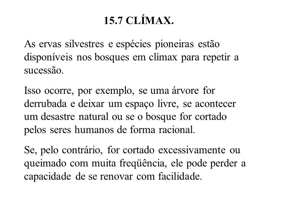 15.7 CLÍMAX. As ervas silvestres e espécies pioneiras estão disponíveis nos bosques em clímax para repetir a sucessão. Isso ocorre, por exemplo, se um