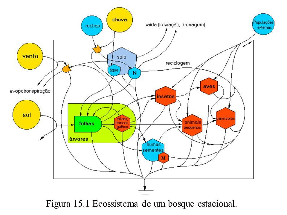 Figura 15.1 Ecossistema de um bosque estacional.