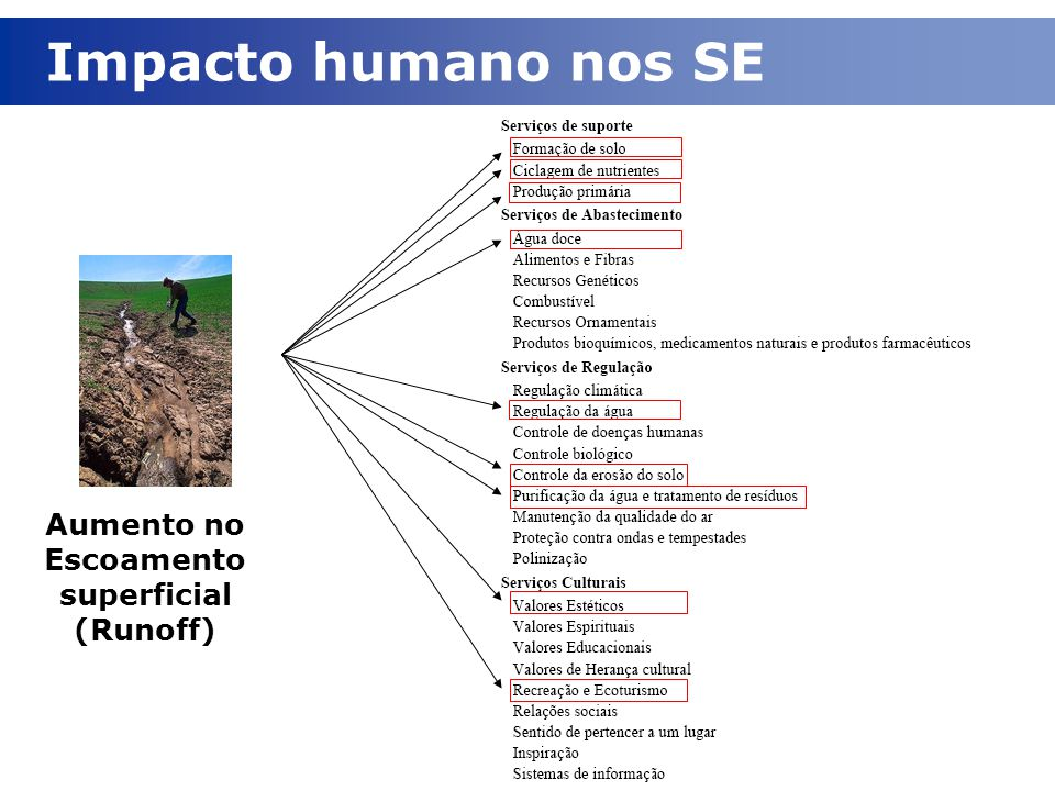 Impacto humano nos SE Aumento no Escoamento superficial (Runoff)