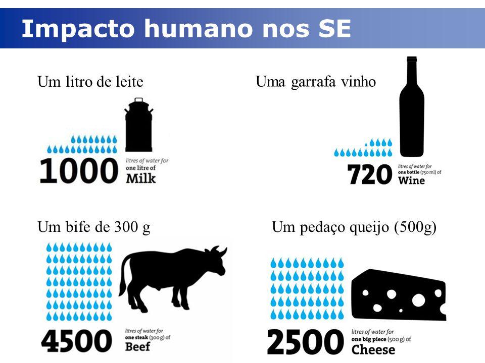 Impacto humano nos SE Um bife de 300 gUm pedaço queijo (500g) Um litro de leite Uma garrafa vinho