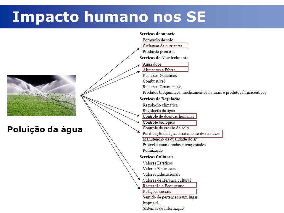 Poluição da água Impacto humano nos SE