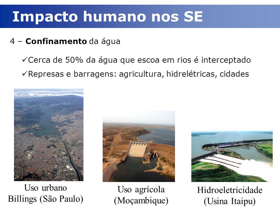 4 – Confinamento da água Cerca de 50% da água que escoa em rios é interceptado Represas e barragens: agricultura, hidrelétricas, cidades Uso urbano Bi