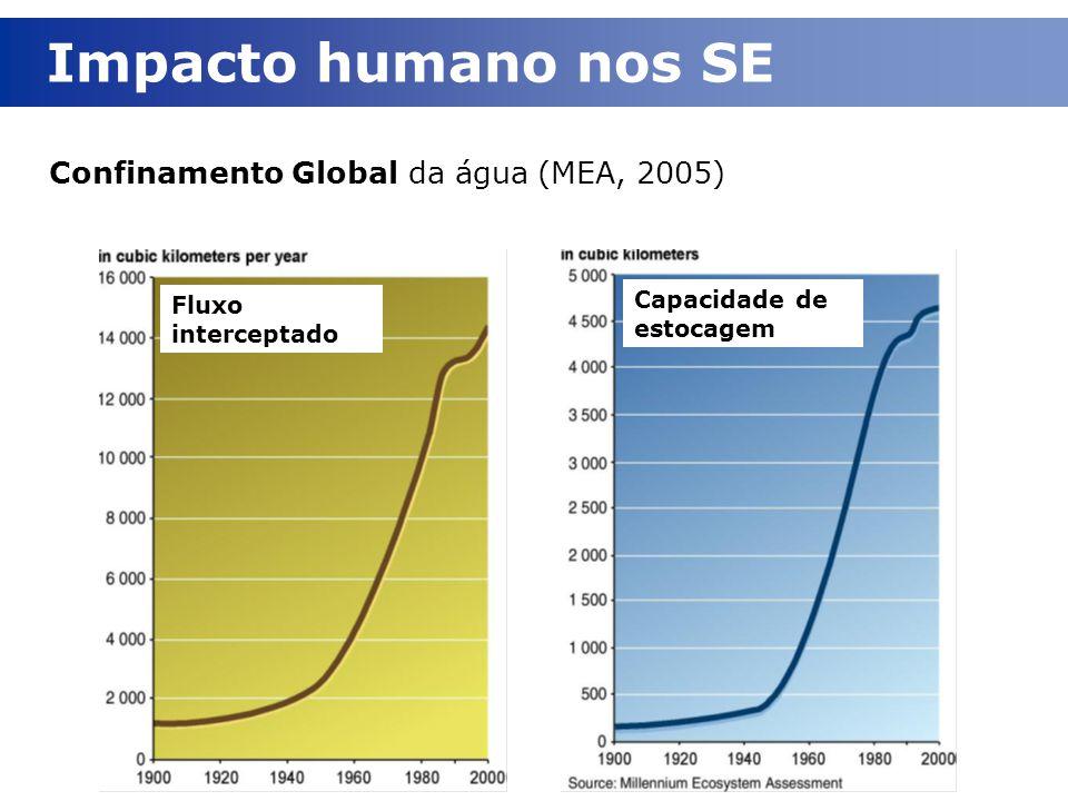 Capacidade de estocagem Fluxo interceptado Confinamento Global da água (MEA, 2005) Impacto humano nos SE
