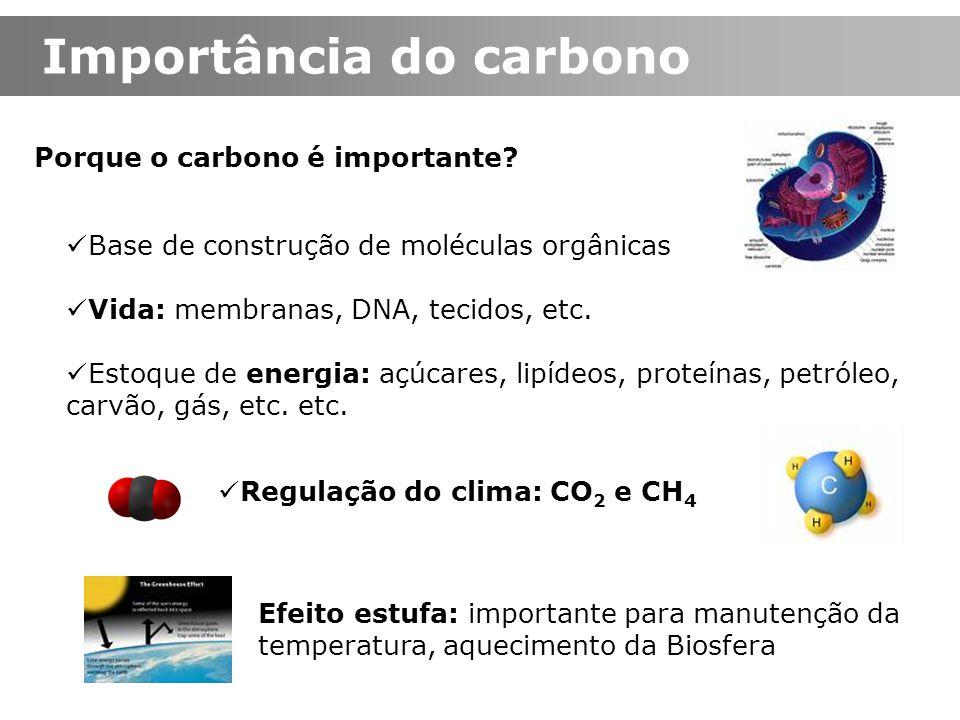 Importância do carbono Porque o carbono é importante? Base de construção de moléculas orgânicas Vida: membranas, DNA, tecidos, etc. Estoque de energia