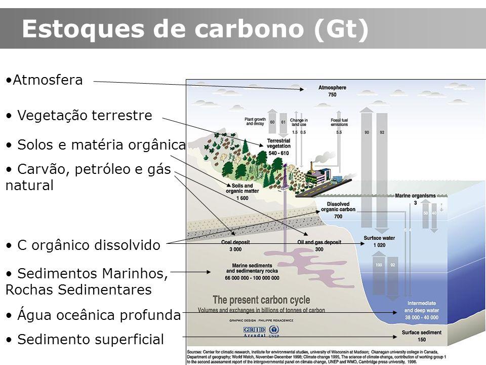 Estoques de carbono (Gt) Sedimentos Marinhos, Rochas Sedimentares Solos e matéria orgânica Água oceânica profunda Sedimento superficial Carvão, petról