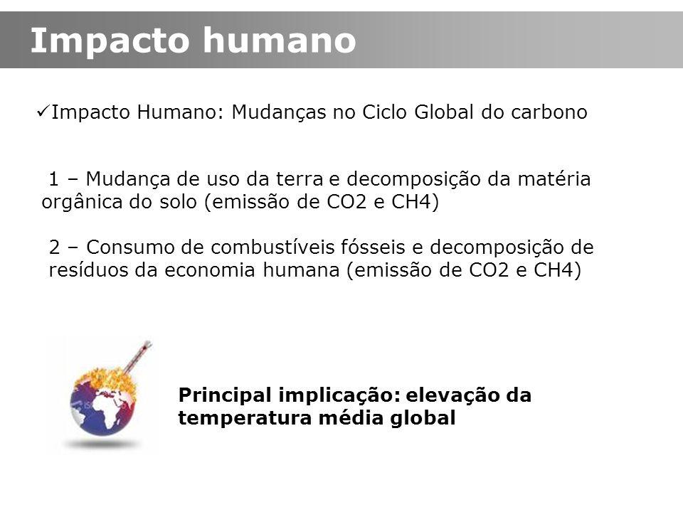 Impacto Humano: Mudanças no Ciclo Global do carbono 1 – Mudança de uso da terra e decomposição da matéria orgânica do solo (emissão de CO2 e CH4) 2 –