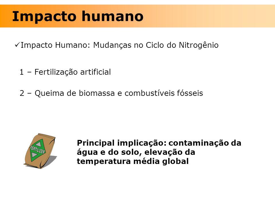 Impacto Humano: Mudanças no Ciclo do Nitrogênio 1 – Fertilização artificial 2 – Queima de biomassa e combustíveis fósseis Principal implicação: contam