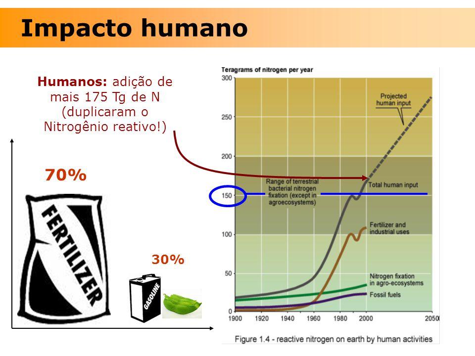 30% 70% Humanos: adição de mais 175 Tg de N (duplicaram o Nitrogênio reativo!) Impacto humano