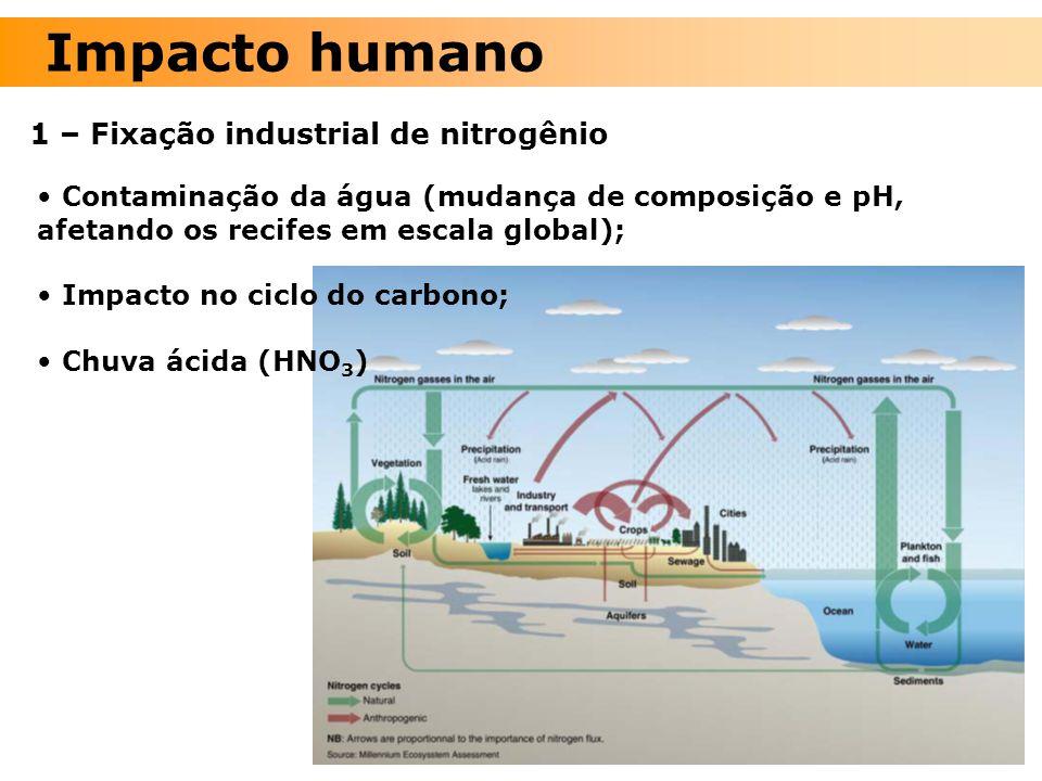 Contaminação da água (mudança de composição e pH, afetando os recifes em escala global); Impacto no ciclo do carbono; Chuva ácida (HNO 3 ) 1 – Fixação
