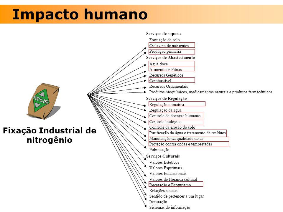 Fixação Industrial de nitrogênio Impacto humano