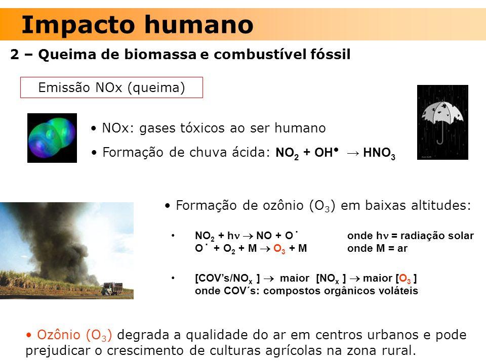 2 – Queima de biomassa e combustível fóssil NO 2 + h  NO + O˙ onde h = radiação solar O˙ + O 2 + M  O 3 + M onde M = ar [COV's/NO x ]  maior [NO x