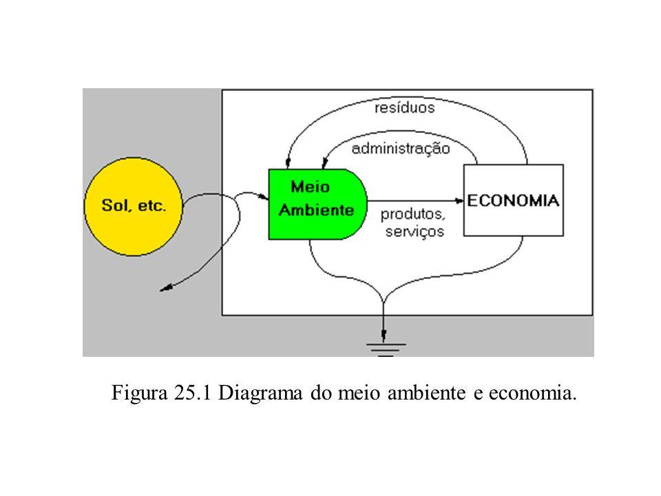 Figura 25.1 Diagrama do meio ambiente e economia.