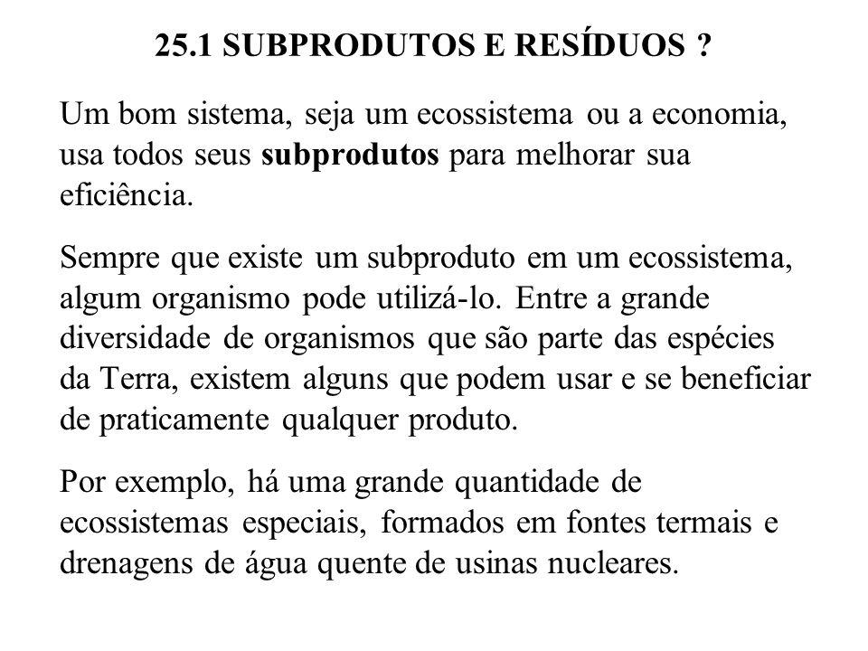 25.3 CHUVA ÁCIDA.