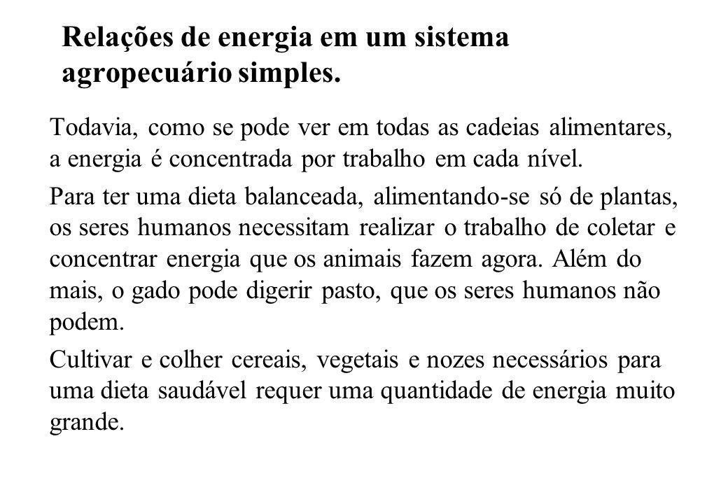 Relações de energia em um sistema agropecuário simples. Todavia, como se pode ver em todas as cadeias alimentares, a energia é concentrada por trabalh