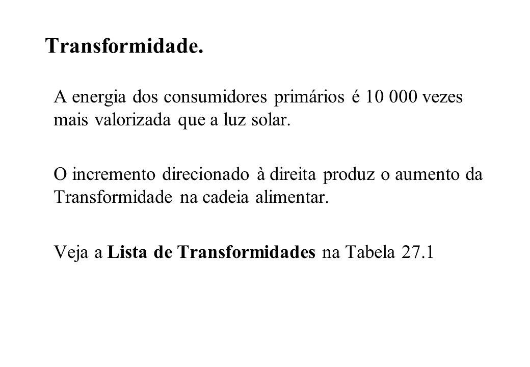 Transformidade. A energia dos consumidores primários é 10 000 vezes mais valorizada que a luz solar. O incremento direcionado à direita produz o aumen