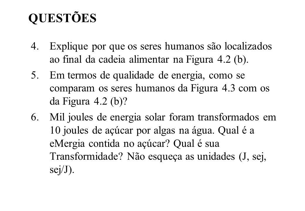QUESTÕES 4.Explique por que os seres humanos são localizados ao final da cadeia alimentar na Figura 4.2 (b). 5.Em termos de qualidade de energia, como