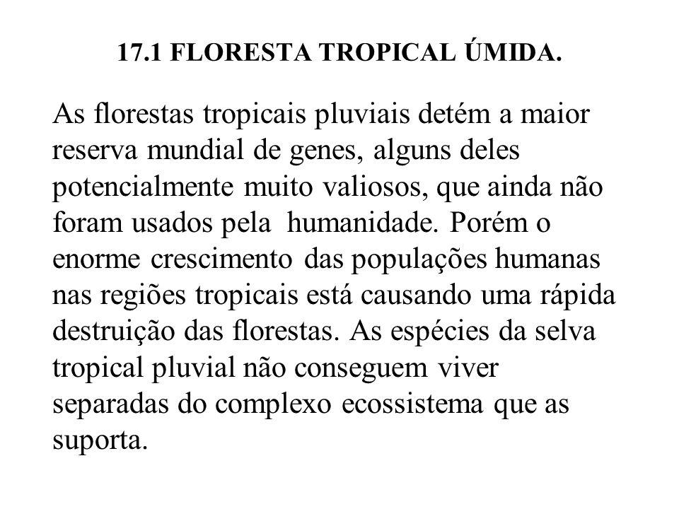 17.1 FLORESTA TROPICAL ÚMIDA. As florestas tropicais pluviais detém a maior reserva mundial de genes, alguns deles potencialmente muito valiosos, que