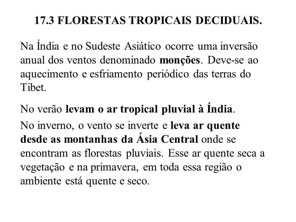 17.3 FLORESTAS TROPICAIS DECIDUAIS. Na Índia e no Sudeste Asiático ocorre uma inversão anual dos ventos denominado monções. Deve-se ao aquecimento e e